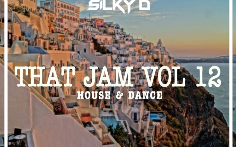 DJ SILKY D presents THAT JAM VOL 12 (House & Dance)